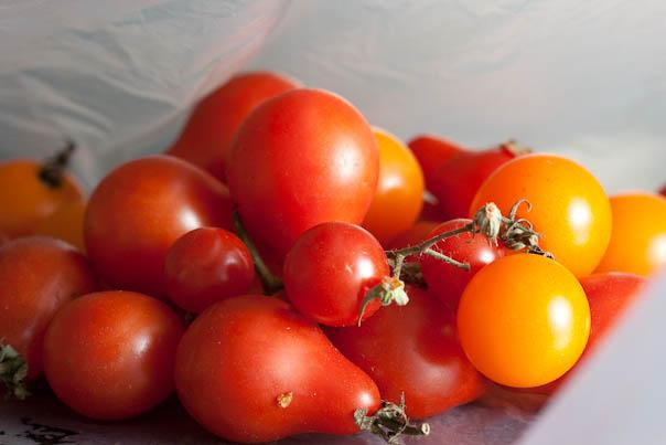 tomato-091002-0001